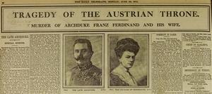 assassination of Archduke Franz Ferdinand of Austria.jpg
