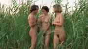 Lepota poroka (1986).jpg