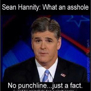 Asshole Sean Hannity.jpg